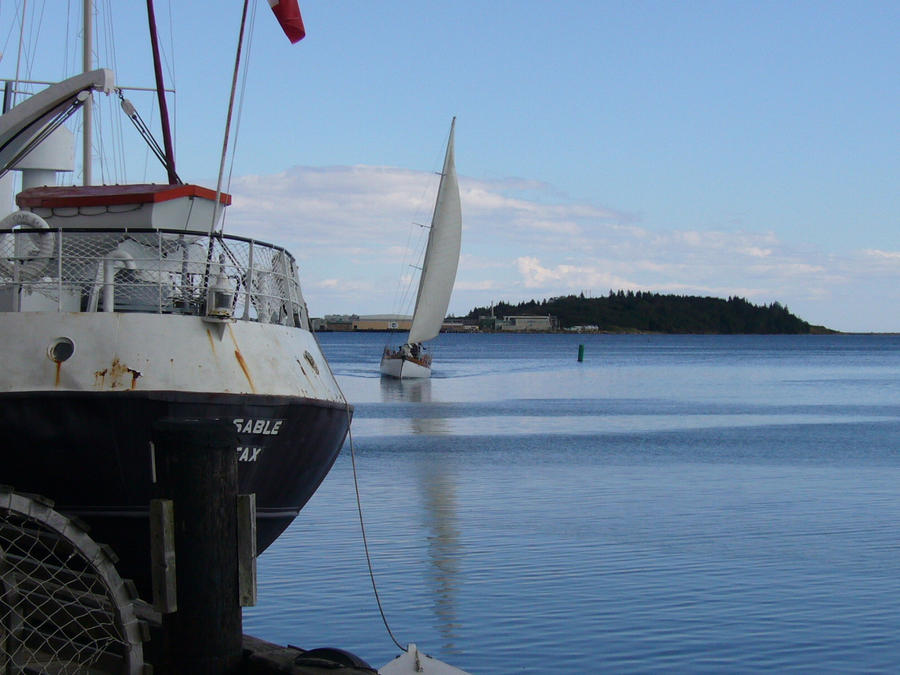 Boat Sails Lunenburg harbour wallpaper