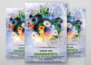 Summer Party Flyer by n2n44studio
