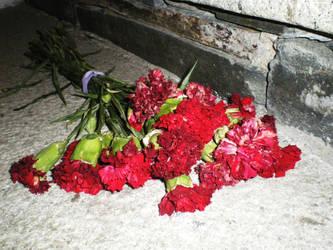 death flowers by yurei-pressure