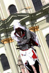 AC Brotherhood-Ezio Cosplay 12