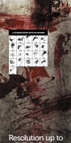 21 Bloodstain Brushes