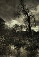 treacherous grounds by photo-earth