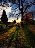 season's end by photo-earth