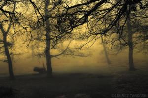 sleepy hollow dream by photo-earth