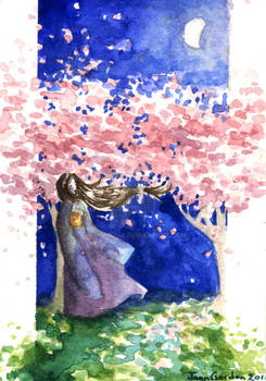 Night Under the Cherryblossoms