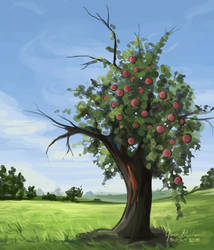 Lesson from the Apple Tree