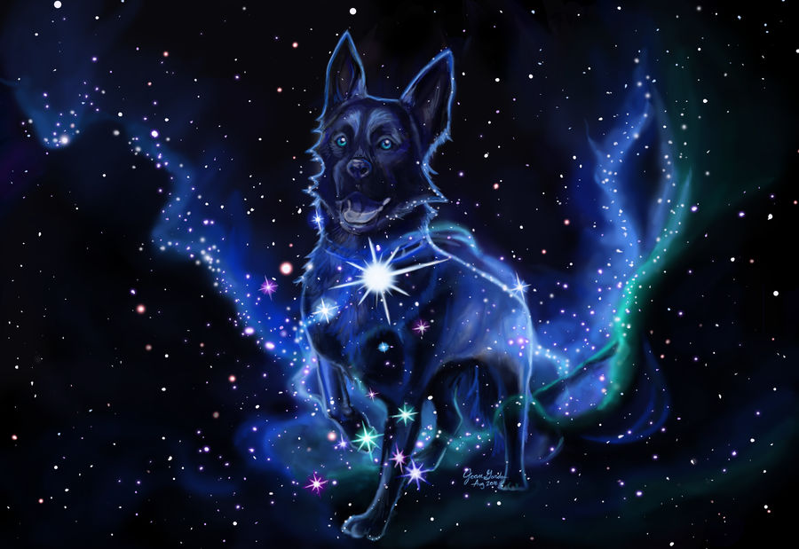 The Good Boy of Canis Major by Delight046