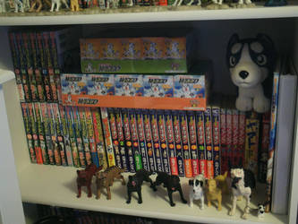 *OUTDATED* Ginga Collection Shelf 3 - 2013 by Demonized-Star