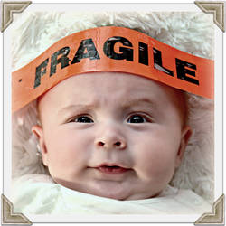 ~Fragile~