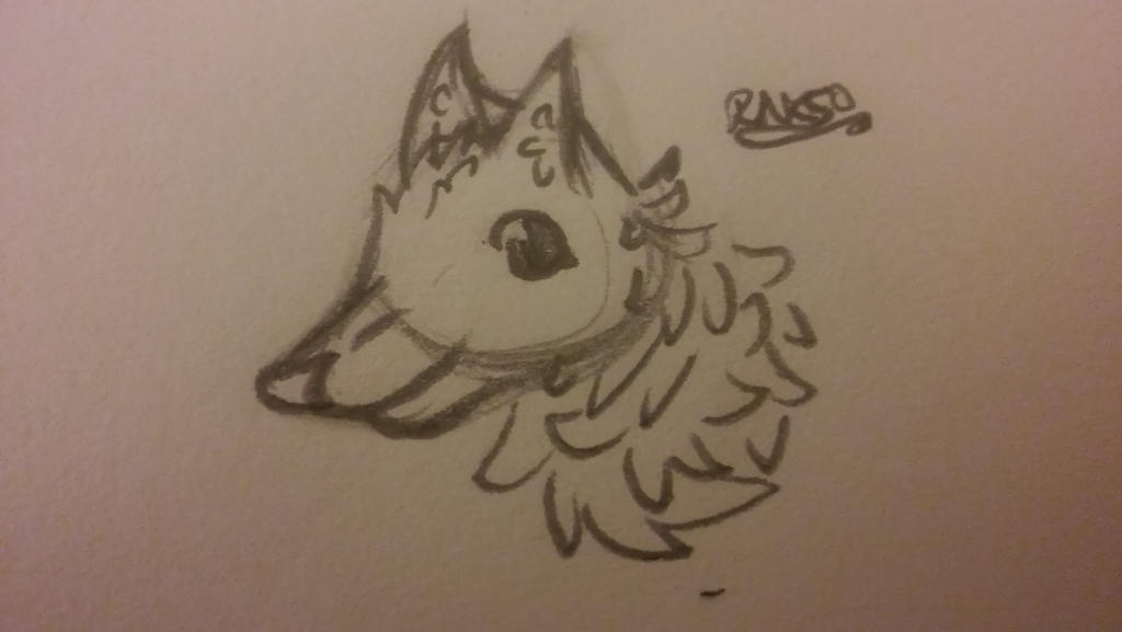 Wolf sketch by RNK50