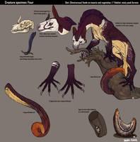 Creature specimen:Fisur by Avian-king