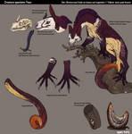 Creature specimen:Fisur
