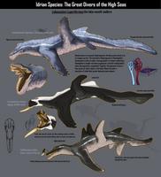 Cetaceans of Idris