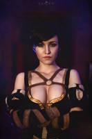 The Witcher 3: Wild Hunt - Fringilla Vigo IV by FreyaVeles