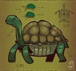 Taima the Tortoise