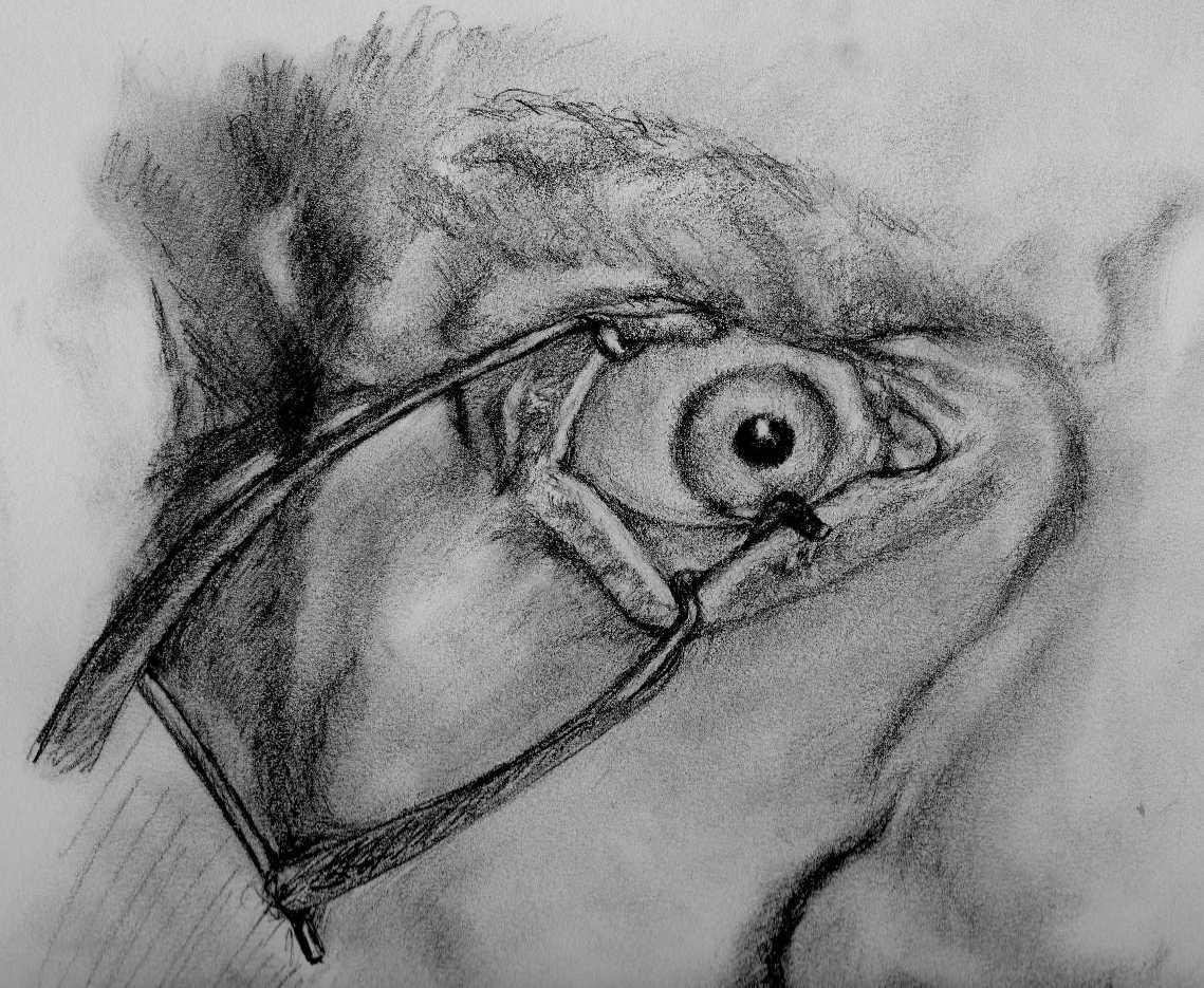 Clockwork Eye by Mogkoli  A Clockwork Orange Alex Drawing