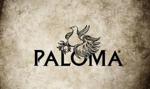 Paloma  Logo Design