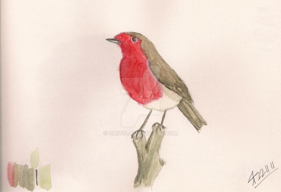 Robin by Smitsi