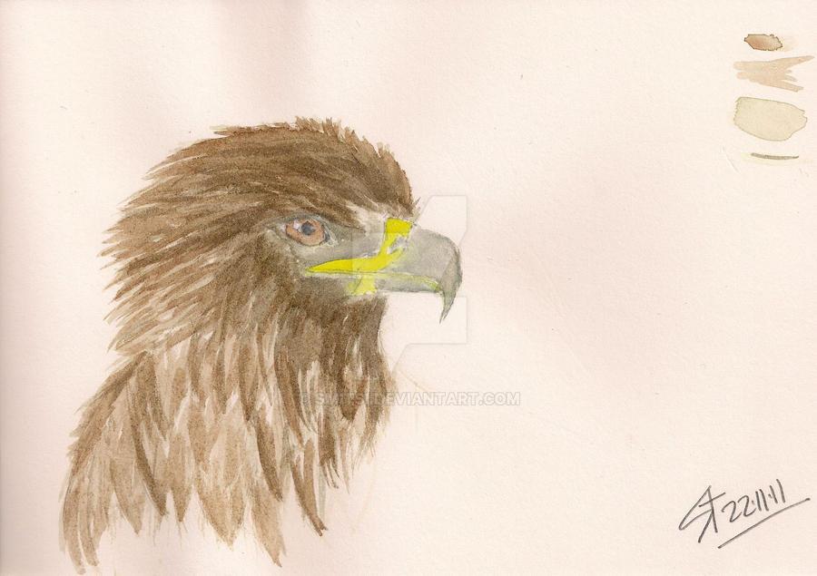B.02 watercolour by Smitsi