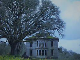 abandoned house in Oregon