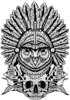 Aurelias Owl