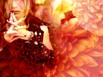 Chrysanthemum by Azuh-ra-el