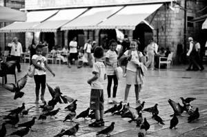 children feeding pigeons by stlasidylko