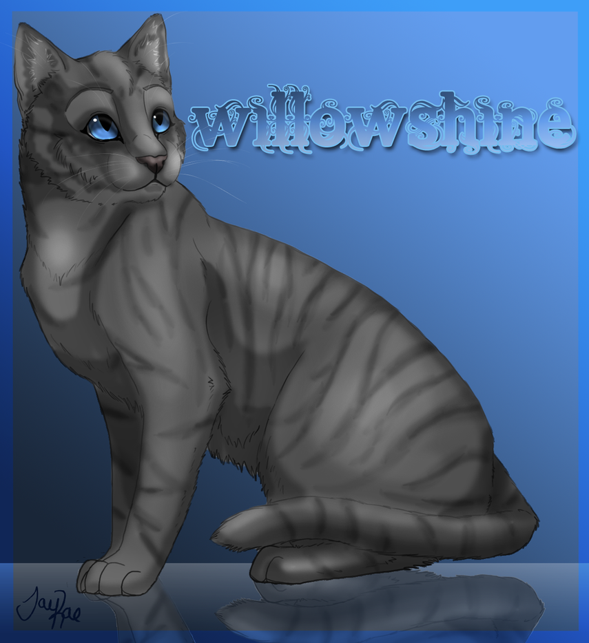 Willowshine of RiverClan by TheMoonfall on DeviantArt Willowshine Warriors
