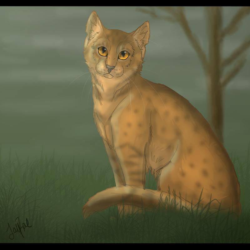 Leopardstar of RiverClan by xxMoonwish