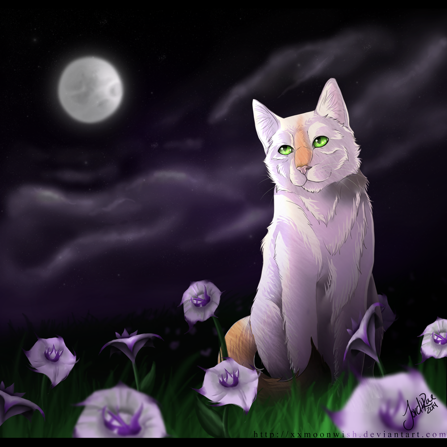 Flowers and a Full Moon - Stixx comm. - by xxMoonwish