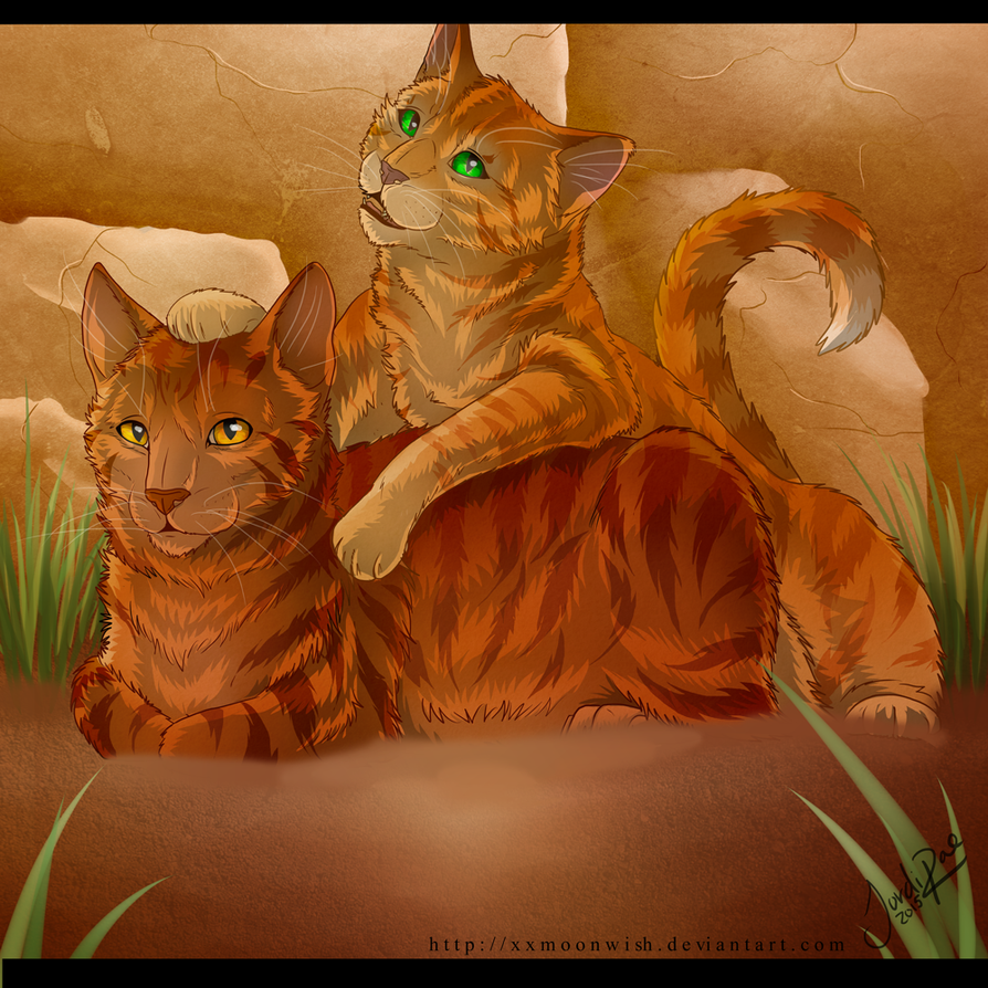 Alderpaw and Sparkpaw - spoilers - by xxMoonwish