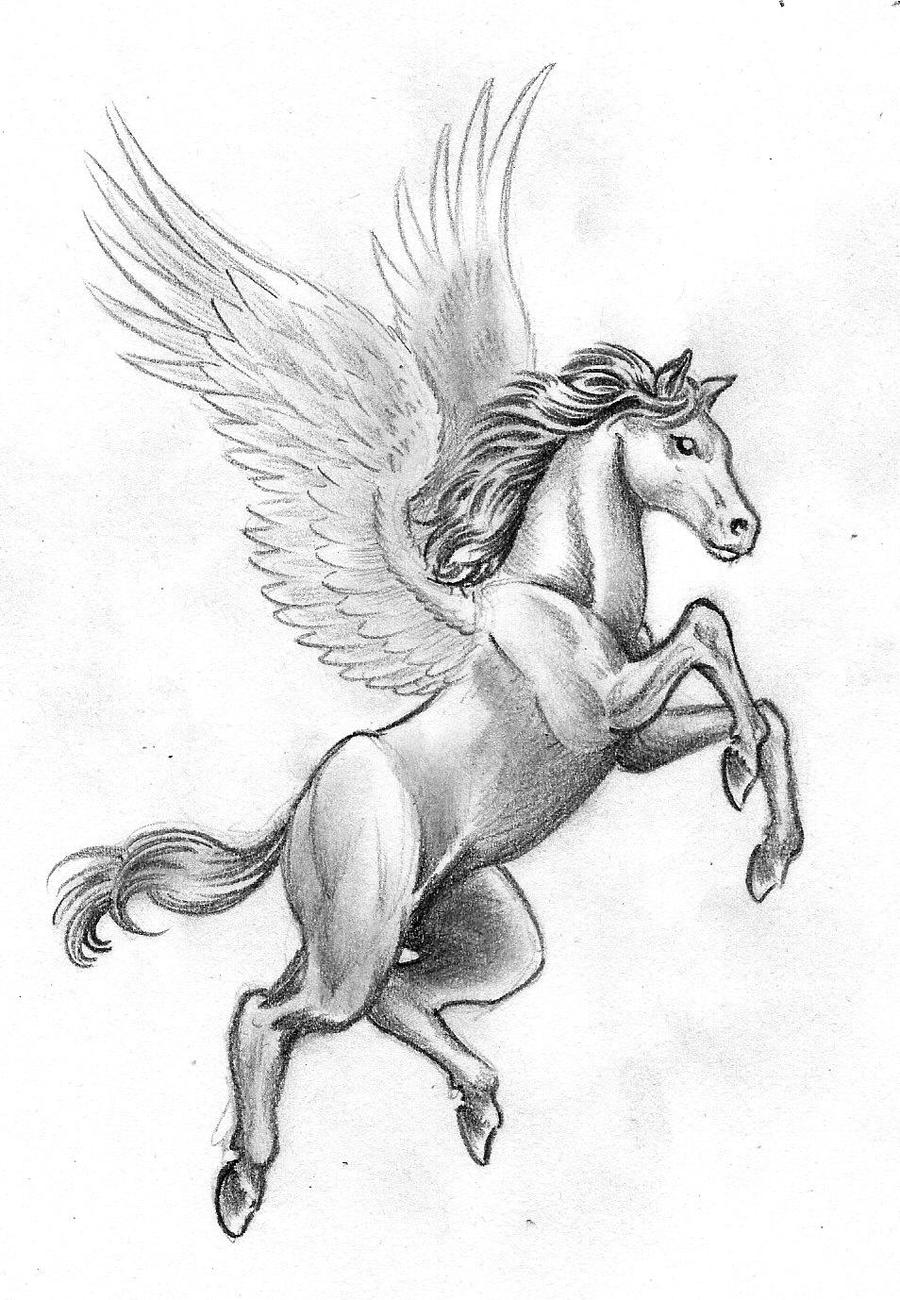Image Result For Pegasus Horse Coloring