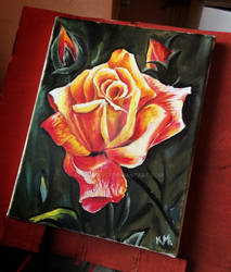Rose | Oil Painting