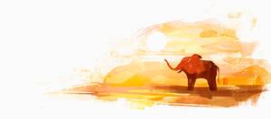 Elephant by Sunset