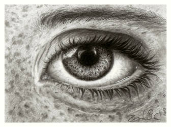 Eye study by Pappa60