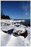 Winter Shore