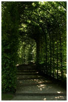 Alnwick Way by kamuidestiny