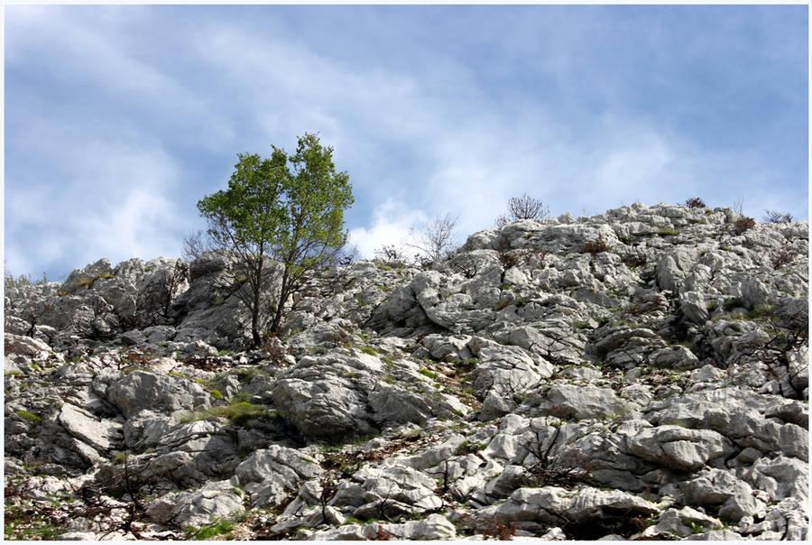 Montenegran Mountains by kamuidestiny
