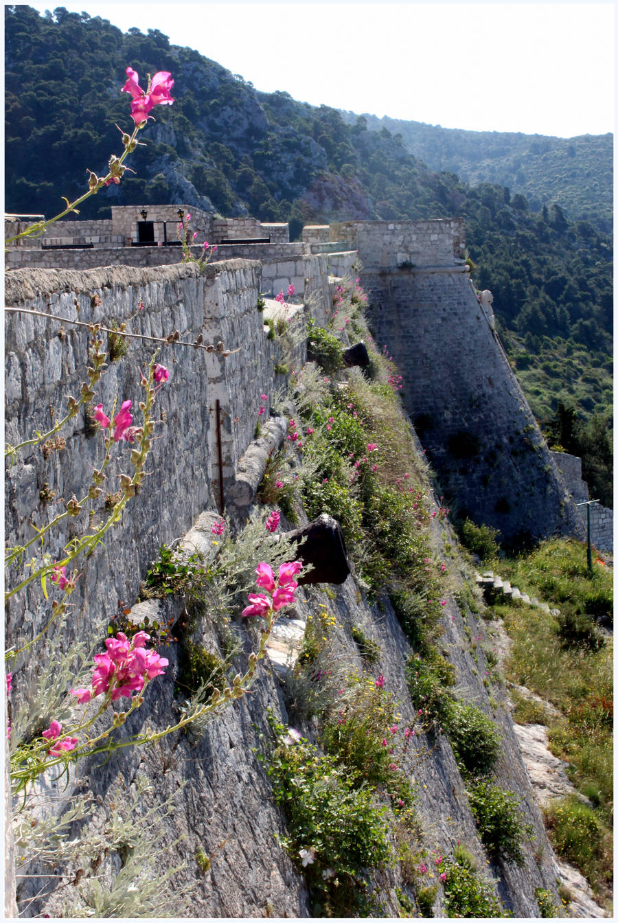 Flower Studded Fortress by kamuidestiny