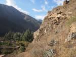 Hillside granaries