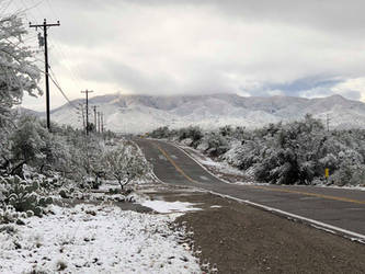 Snow IX by Dynamoe