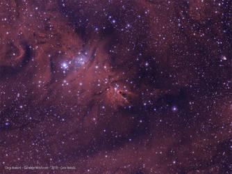 Cone Nebula 20181110 HaOIII by the0phrastus