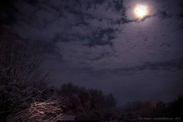 Snowy Night 20181120 by the0phrastus