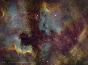 North America Nebula and Pelican Nebula in Cygnus