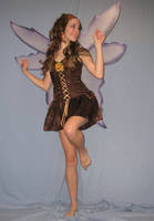 Fairy 16 by magickstock