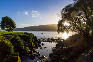 Macandrew Bay by ARC-Photographic