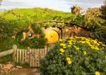 Hobbiton Yellow Door by ARC-Photographic