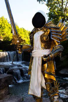 Lady Tyrael - Diablo 3