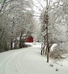 Barn in winter 2