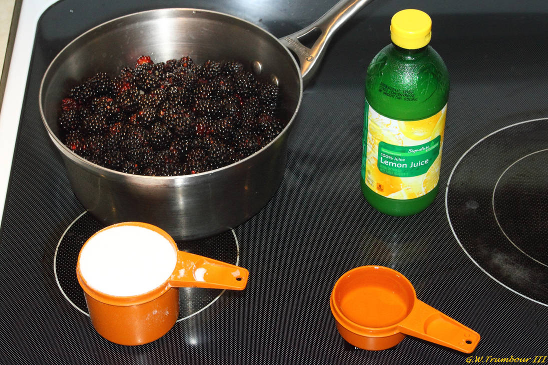 Making Homemade Black Raspberry Syrup 1 by natureguy